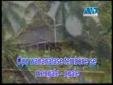 Opo Wananatas - North Sulawesi